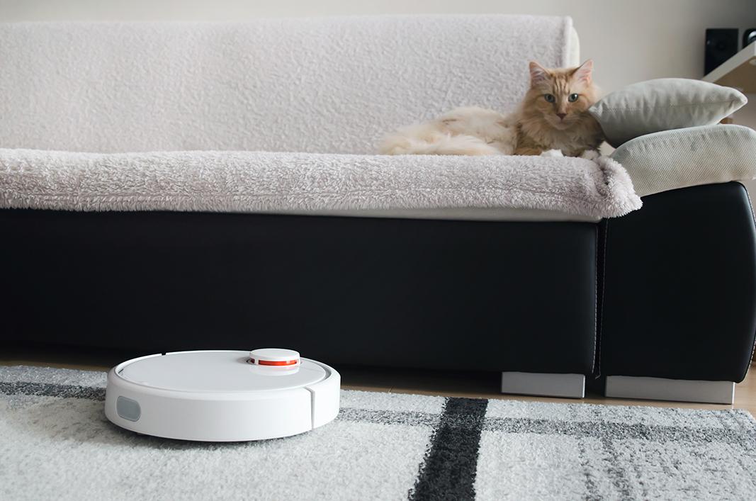 котик и робот
